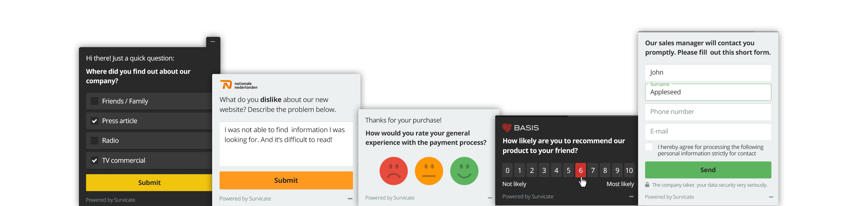 examples of web app surveys