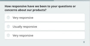 customer satisfaction survey example